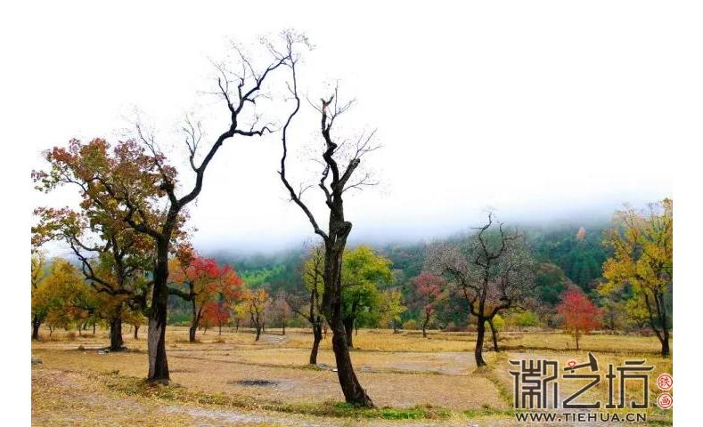 安徽省六安市金寨县天堂寨风景区
